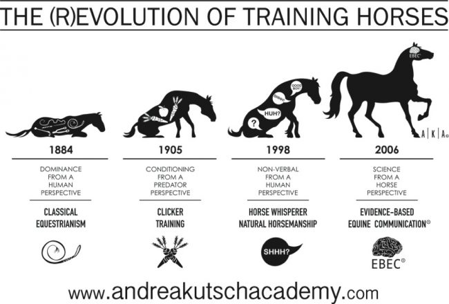 (R)Evolution of training horses